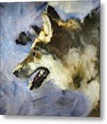 Wolf Storm Metal Print