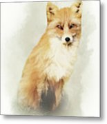 Woodland Fox Portrait Metal Print