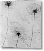 X-ray Three Roses Metal Print