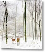 Forest Winter Visitors Metal Print