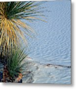 Yucca Plant In Rippled Sand Dunes In White Sands National Monument, New Mexico - Newm500 00113 Metal Print