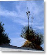 Yucca Plant In Rippled Sand Dunes In White Sands National Monument - Newm500 00107 Metal Print