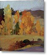 Montana Autumn Metal Print