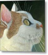Cat Portrait Pastel Painting Metal Print