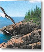 Crusing Otter Point Metal Print