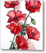 English Field Poppies. Metal Print