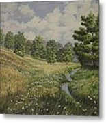 Field And Stream Metal Print