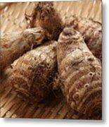 Fresh harvested, Satoimo potatoes.(taro, taro root). Metal Print