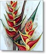 Heliconia Tropicana Trinidad Metal Print