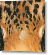 Jaguar Gaze Metal Print
