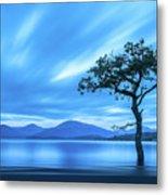 Lone tree Milarrochy Bay Metal Print