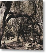 Magnolia Cemetery Metal Print