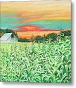Neola Corn Metal Print