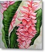Pink Ginger Lilies Metal Print