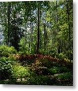 Sunlit Garden Metal Print