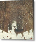 The Forest of Snow White Metal Print