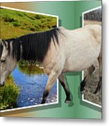 The Grass Is Always Greener On The Other Side Metal Print