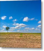 The loneliness of the tree in the middle of the soy plantation in the rural area of Piracicaba. Metal Print