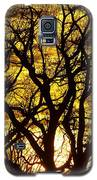 Bastrop Sunset Galaxy S5 Case by James Granberry