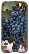 Concord Grapes Galaxy S5 Case by Leeon Photo
