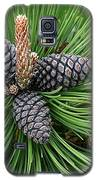 Up Cone Galaxy S5 Case by Leeon Photo