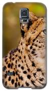 Cheetah In A Forest Galaxy S5 Case by Nick  Biemans