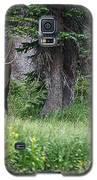 Grazing Elk Galaxy S5 Case by Richard Lynch
