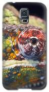 Panther Chameleon  Galaxy S5 Case by Nathan Rupert