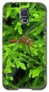 Scarlet Darter Male Dragonfly Galaxy S5 Case by Rockin Docks