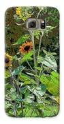 Sunflower Garden Galaxy S6 Case by Annette Allman