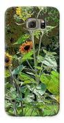 Sunflower Garden Galaxy S6 Case