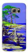 North Florida Beach Galaxy S6 Case by Annette Allman