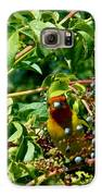 A Day With Mr. Tanager 2 Galaxy S6 Case by Jacquelyn Roberts