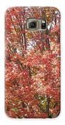 Autumn Blaze Galaxy S6 Case by Kevin Croitz