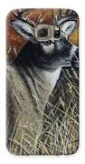 Autumn Buck Galaxy S6 Case by Kimberly Blaylock