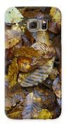 Autumn Leaves Galaxy S6 Case by David  Hawkins