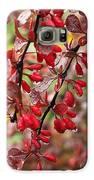 Autumnal Little Wonders_2 Galaxy S6 Case by Halyna  Yarova