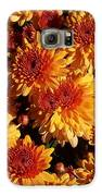 Blaze Of Flowers Galaxy S6 Case by Kevin Croitz