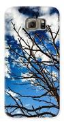 Branching Light  Galaxy S6 Case by Natalya Karavay