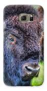 Buffalo Warrior Galaxy S6 Case by Skye Ryan-Evans