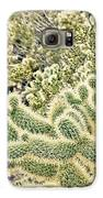 Cactus  Galaxy S6 Case by Merrick Imagery