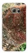 Cactus Galaxy S6 Case by Sharon McLain