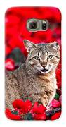 Cat In Red Galaxy S6 Case