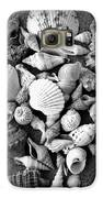 Cluster Of Shells Galaxy S6 Case by Diane Reed