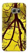 Colorful Branches Galaxy S6 Case