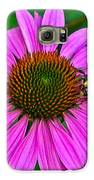Cone Flower An Bumble  Galaxy S6 Case by Brittany Perez
