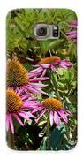 Coneflowers Galaxy S6 Case by Annette Allman