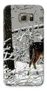 Deer On Snowy Trail Galaxy S6 Case by Sharon McLain