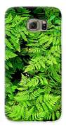 Ferns And Fauna Galaxy S6 Case by T C Brown