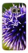 Floral Sticker Ball Galaxy S6 Case by Alexandra  Rampolla